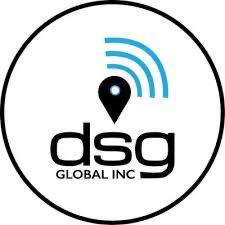 DSG Global Subsidiary