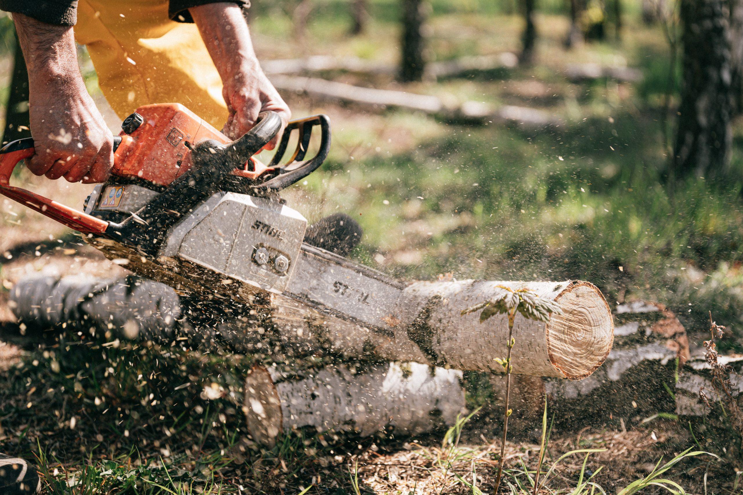 epar chainsaw